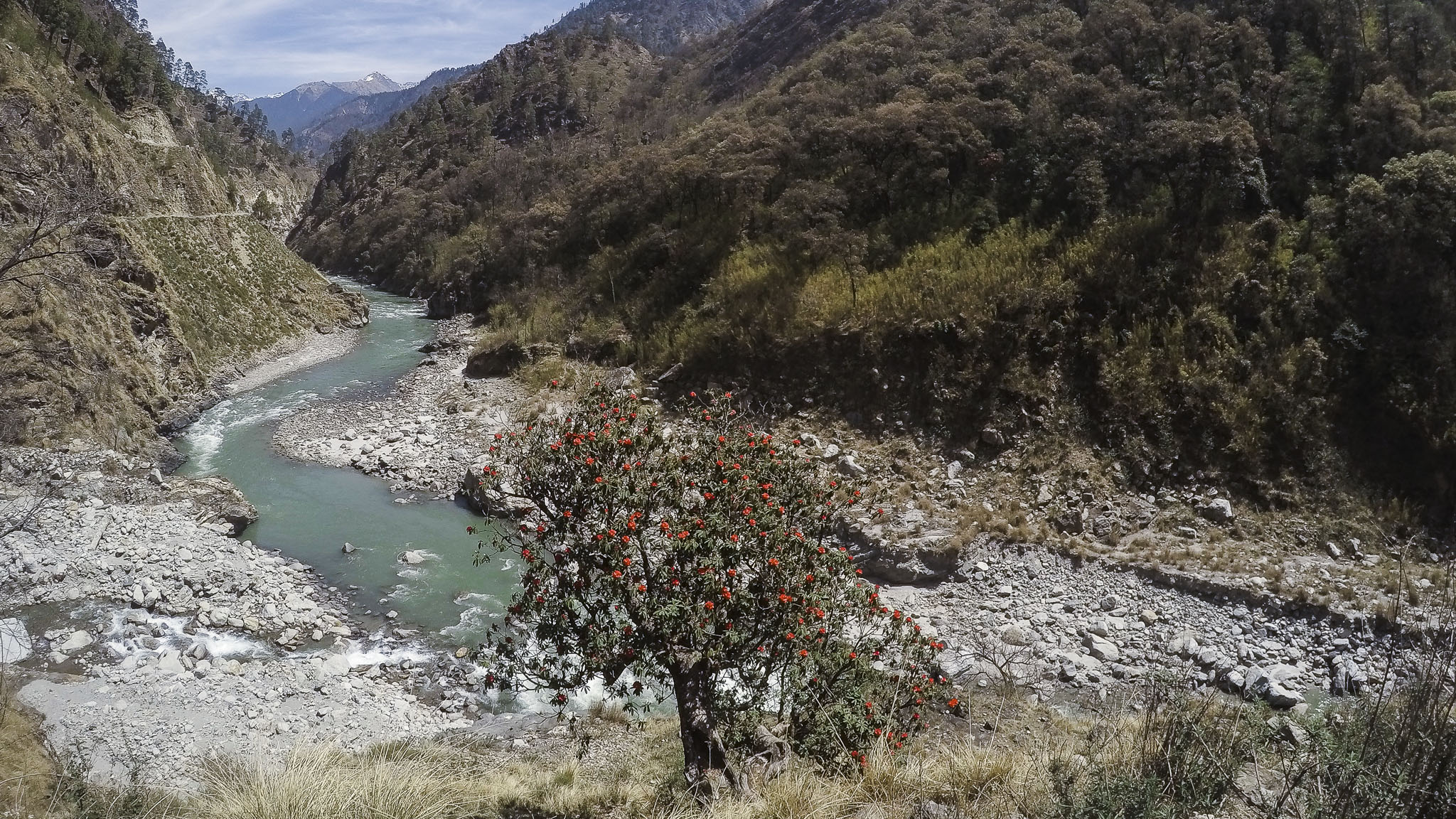My River Journey : Looking Back From The Present – India Rivers Forum